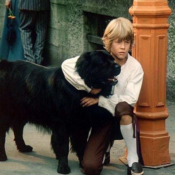 Matic iz filma Sreča na vrvici danes o psih meni to …